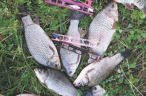 отчеты рыбаков с подмосковных водохранилищ