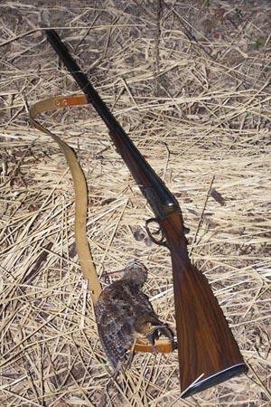 Ружье иж 26 е и охотничье ружье иж